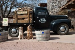 El Portal Sedona Hotel - Dogs and Truck